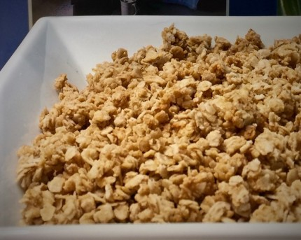 granola 12 (2)
